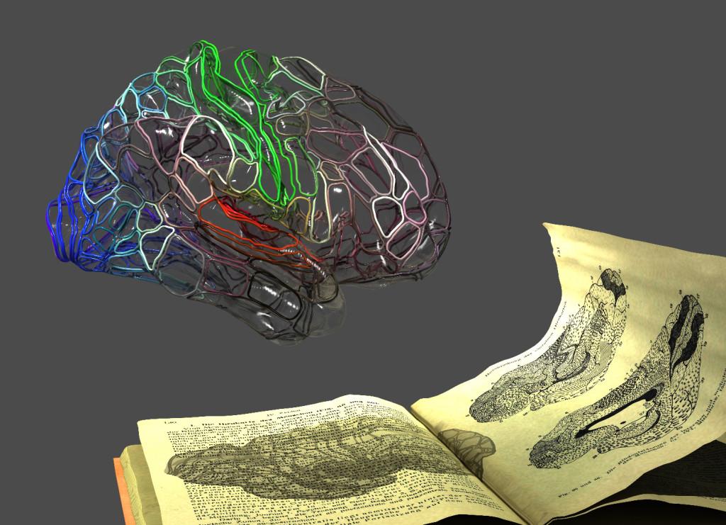 Michiel KleinnijenhuisFMRIB-Wellcome Centre for Integrative Neuroimaging