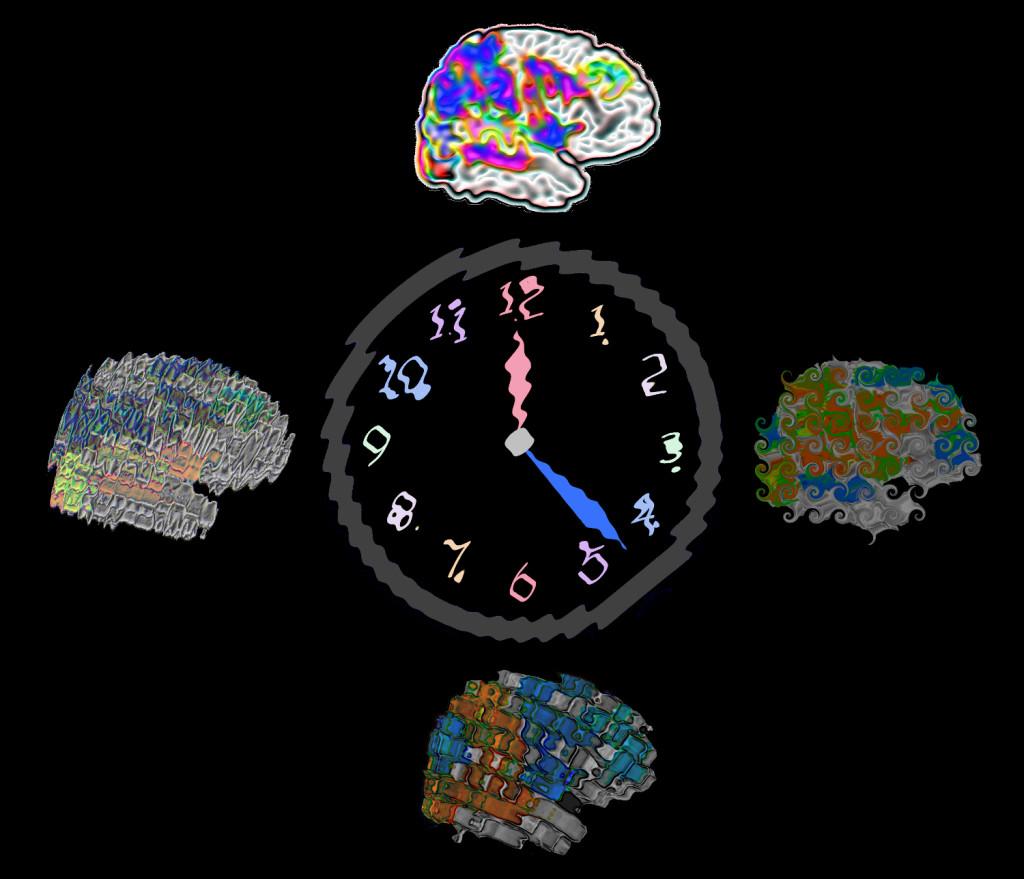 Vince CalhounThe Mind Research Network (MRN)